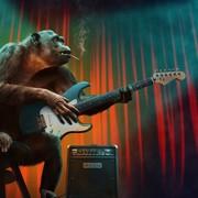 Quadro - Music Animal