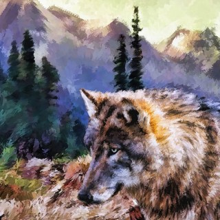 Quadro - Wolf