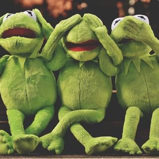 Quadro - Frog's